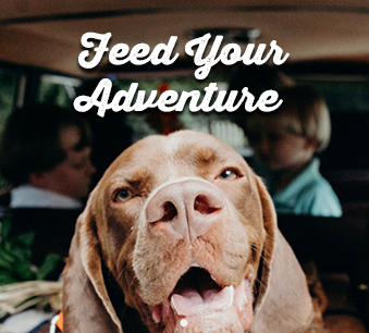 Feed Your Adventure