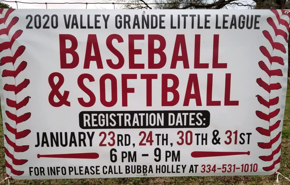 Valley Grande Little League Beaseball.jpg